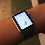 Apple WatchはポケモンGOのココだけでも対応してほしい
