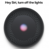 聞き取り性能はAlexa (Echo Dot)> Siri(iPhone X)