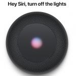 聞き取り性能はAlexa (Echo Dot)> Siri(iPhone X)