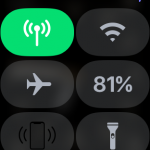 ポケモンGO、いつのまにかApple Watch単独でも利用可能に