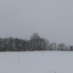 雪なのでクロスカントリースキーの練習 Apple Watchで記録が難しい